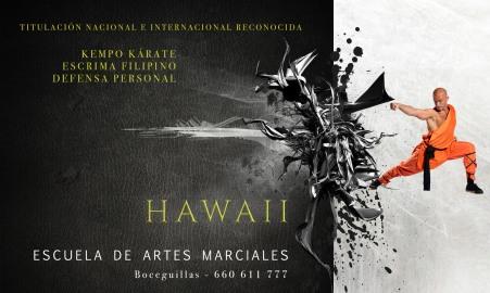 Hawaii - Billboards & banners