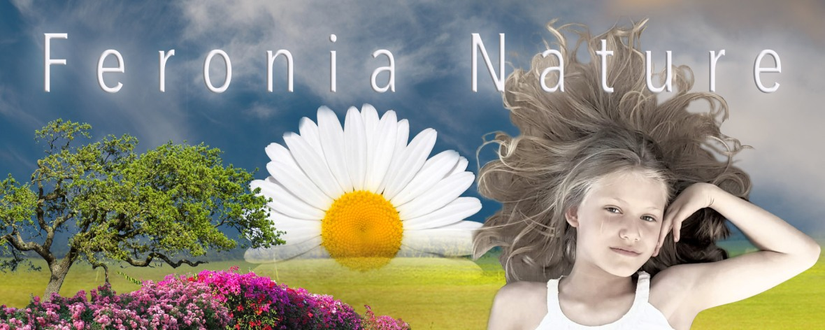 FN-Poster-Emma-Small-1b