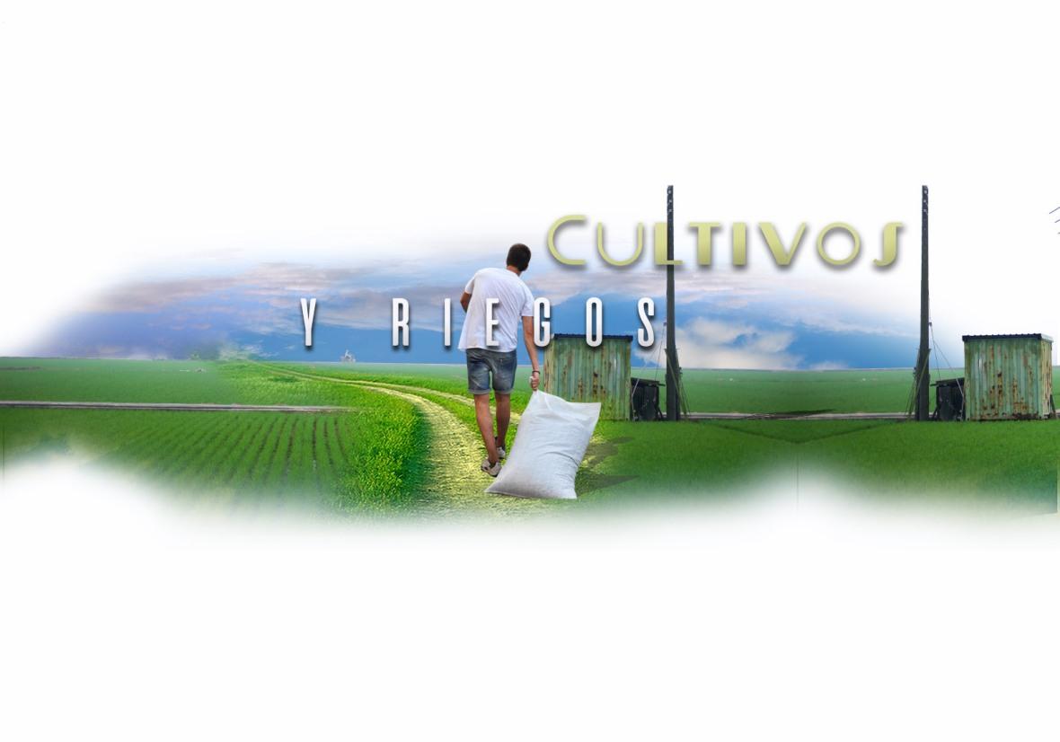 NP-Cultivos y riegos-5
